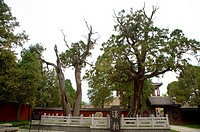 China, Shandong, Taian, Dai Temple, UNESCO, World Heritage, World Cultural Heritage