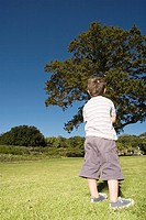 Rear view of little boy standing in park