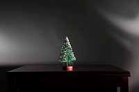 Miniature christmas tree on table