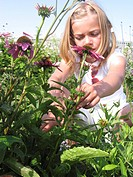 Girl picking coneflowers