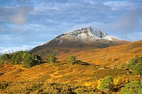 Glen Affric in the Autumn Scotland