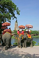 Tourist Ayutthaya Elephant riding before Royal Palace Wat Ratchaburana