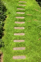 Footpath leading away across lush green lawn (thumbnail)