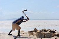 Salt lifting,  On the bottom of the local social scale are the Focolo, the ´salt lifters´, poor immigrants from Tigray. Asale salt lake. Afar region. ...