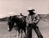 cowboy, horse, western