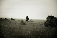 Old Man Walking in Field by the Sea