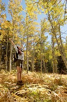 Hiker with arms outstretched in woodland