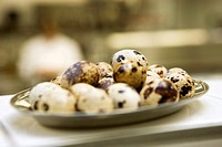 Quails´ eggs on a stainless steel tray