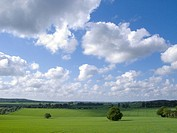 Green fields and cloudy sky (thumbnail)