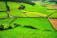 Pastures in Azores islands, Portugal