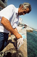 Fisherman preparing octopus in harbour, Greece