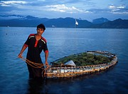 Seaweed Farmer, Gili Islands, Lombok, Indonesia
