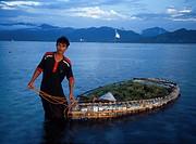 Seaweed Farmer, Gili Islands, Lombok, Indonesia