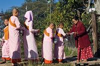 Young nuns begging, Inle Lake, Nyaungshwe, Shan State, Burma, Myanmar, Asia