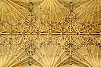 Fan vaulting in the Abbey Church of St. Mary the Virgin in Sherborne, Dorset County, England, United Kingdom, Europe