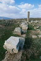 Photograph of the ruins of Amudim in the Lower Galilee