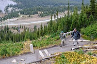 Hikers on Parker Ridge trail, Columbia Icefield, Banff National Park, Rocky Mountains, Alberta, Canada