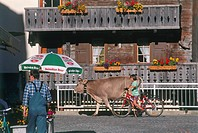 Photograph of a typical swiss village