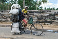 A man carrying bags with charcoal on his bicycle, Quelimane, Mozambique, Africa