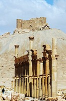Ruins in the Palmyra archeological site, in the back castle Qala'at Ibn Ma'n, Tadmur, Syria, Asia