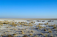 Etosha pan in the dry season, view from Etosha Lookout, Etosha National Park, Namibia, Africa