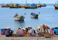 Women in the fish market, in the back colorful wooden fishing boats, beach of Mui Ne, Vietnam, Asia