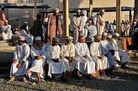 Omani men in traditional dress, Nizwa animal or livestock market, Hajar al Gharbi Mountains, Al Dakhliyah region, Sultanate of Oman, Arabia, Middle Ea...