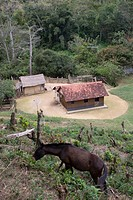 Houses Quilombolas, Iporonga, São Paulo, Brazil