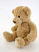 Teddy bear, soft toy