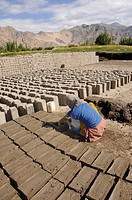 Brickworks, Ladakhi woman kneading clay bricks, Leh, Ladakh, North India, Himalaya