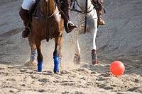 Beach polo tournament, Timmendorfer Strand, Schleswig-Holstein, Germany, Europe