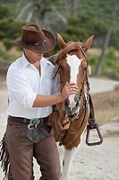 man padding horse
