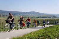 Group of cyclists, Lake Constance, near Bodmann, Baden-Wuerttemberg, Germany, Europe