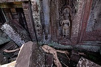 Apsara-figure in the overgrown temple site Ta Phrom, Angkor, Seam Reap, Cambodia