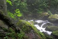 mountain creek, Germany