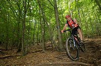 Mountain bike rider riding along a root singletrail near Willingen, Hesse, Germany, Europe