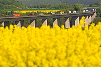Blossoming rape field, in the back the Brohtalbruecke Bridge, A61 motorway, Gemany, Europe