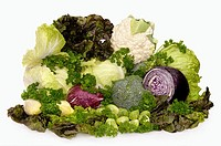 Food still life with all sorts of fresh juicy vegetables and greens Cauliflower, broccoli, green cabbage, red cabbage, head lettuce, red leaf lettuce,...