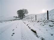 Glendevon, Perth and Kinross, Scotland, England