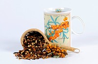 Cup of Sea Buckthorn tea / Hippophae rhamnoides