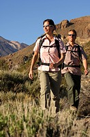 Hikers in the Teide National Park, Tenerife, Canary Islands, Spain, Europe