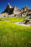 Badlands National Park, South Dakota - Late spring in Badlands National Park