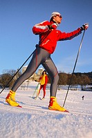 cross country skier, Austria, Alps