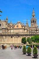 Cathedral and Giralda tower, Sevilla. Andalusia, Spain