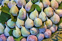 edible fig, common fig Ficus carica, figs at the market stand, Spain, Katalonia, La Boqueria, Barcelona
