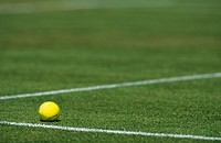 Tennis ball on a grass court