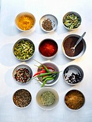 Various exotic spices in twelve small dishes