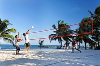 Tourists playing beach volleyball under palm trees, San Pedro, Ambergris Cay Island, Belize, Central America, Caribbean