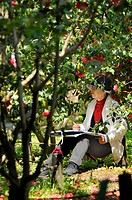 Japanese amateur painter in the botanical gardens amongst camelia branches, Kyoto, Japan, Asia