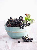 Chokeberries Aronia berries in ceramic bowl